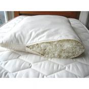 Organic Pillows