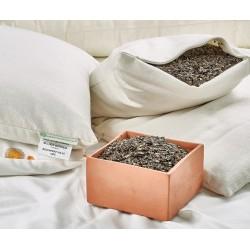 Buckwheat Sleep Pillows